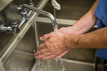 Food preparer washing hands