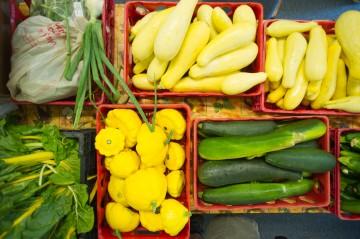 Photo of garden vegetables in crates