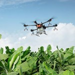 drone flying over crops