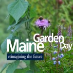 Maine Garden Day: reimagining the future