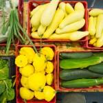 harvest-for-hunger-veggies