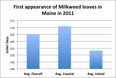 First appearance of milkweed leaves in Maine in 2011: Average overall = 165 Julian Days; Average coastal = 170+ Julian Days; Average Inland = 153+ Julian Days