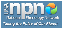 USA NPN: National Phenology Network; taking the pulse of our planet