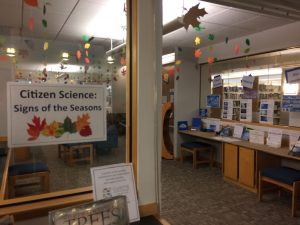 Exhibit at Curtis Memorial Library titled Citizen Science Signs of the Seasons