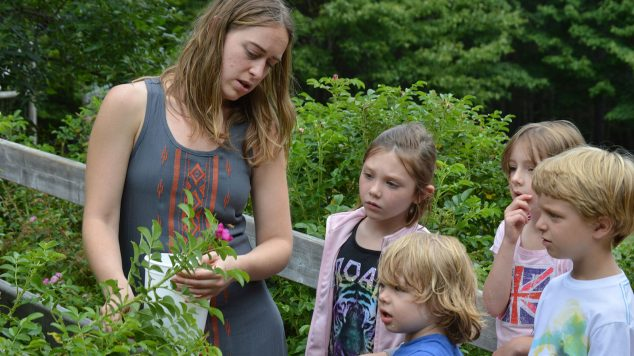 campers learn about wild edibles