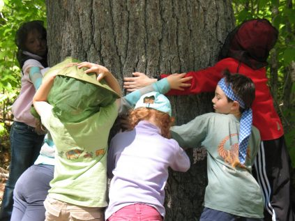 campers make a circle around a tree