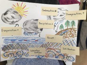 water cycle illustration with lables