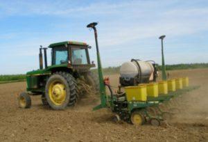 fertilizing a corn field