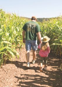 man and girl walking in a cornfield