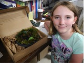 SPIN Library participant showing her plant project.