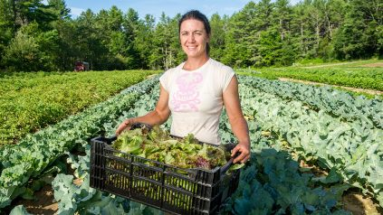 farmer standing in a field holding a crate of freshly picked lettuce