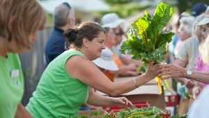 Harvest for Hunger volunteers distribute fresh produce to hungry Mainers