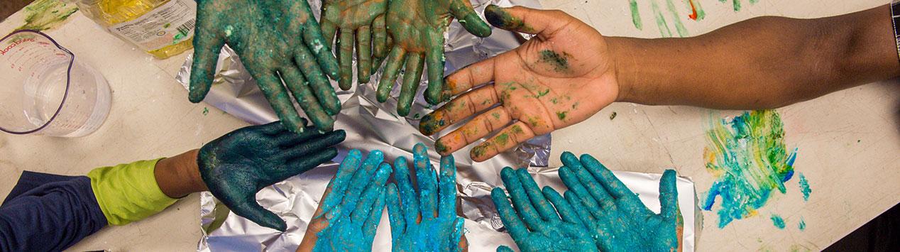 4-Hers hands
