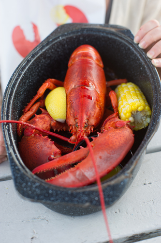 boiled lobster in pot with corn on the cob; photo by Edwin Remsberg