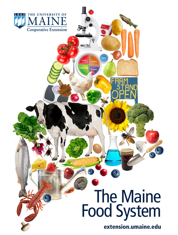 illustration showing products of Maine