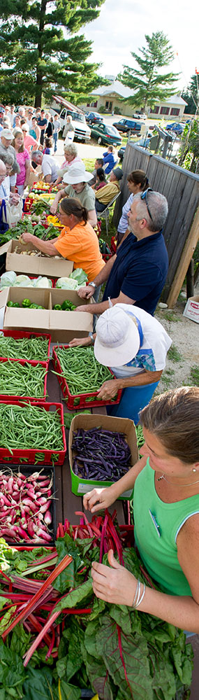 Maine Harvest for Hunger volunteers distribute fresh produce to hungry Mainers.