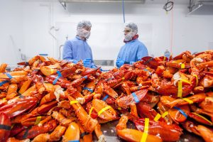 Food safety expert consults with business owner in lobster processing plants