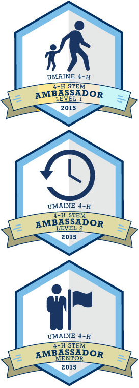 STEM Ambassador badges