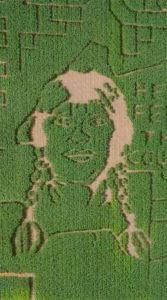 Illustration of Dixie Shaw cut into a corn maze