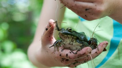 youth holding a frog